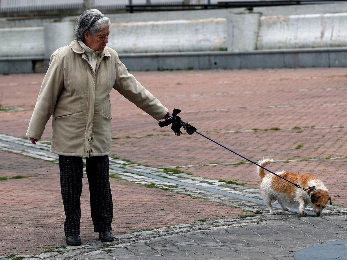 Foto: Una mujer pasea con su perro en una imagen de archivo. (EFE)