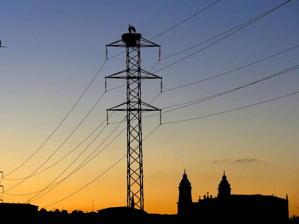 Foto: Tendido eléctrico (EFE)