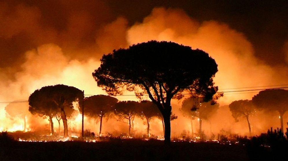 Foto: Las llamas del incendio de Moguer (huelva) entran en el Espacio Natural de Doñana. (EFE)