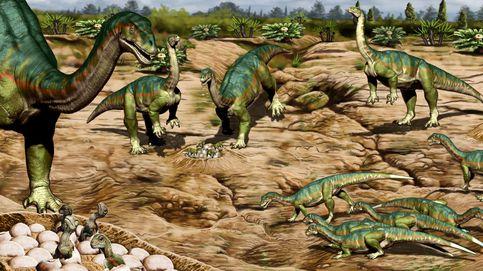 Algunos dinosaurios habrían vivido en manadas hace 192 millones de años