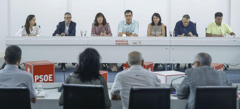 Foto: Pedro Sánchez, con miembros de su ejecutiva y de organizaciones ecologistas, durante su encuentro en Ferraz, este 10 de julio. (EFE)