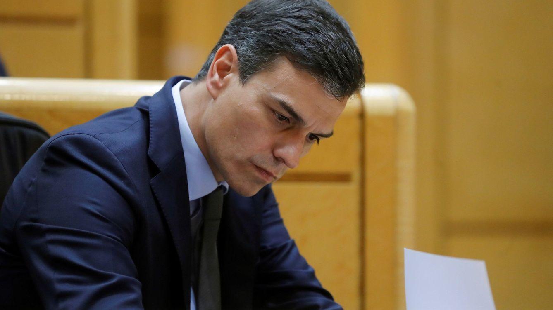 Foto: Imagen de Pedro Sánchez en el Senado. (Efe)