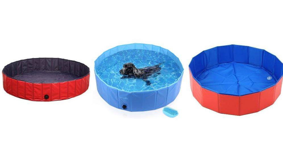 Foto: Combate el calor canino con las mejores piscinas para perros