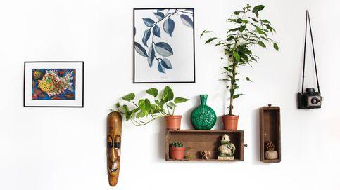 ¿Cómo decorar una pared con marcos y fotografías? Aprende estos trucos para una pared de museo