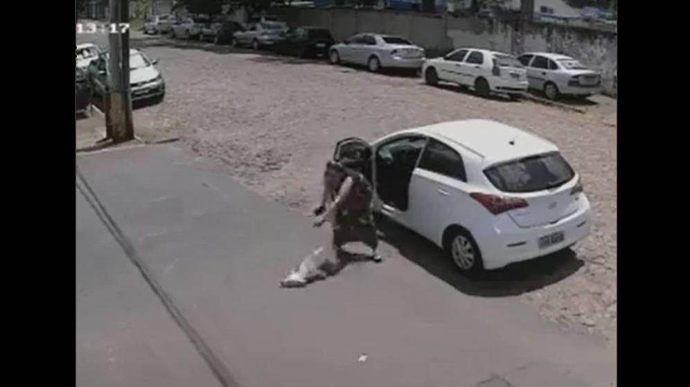 Foto: La mujer lanzó a Tintín contra el suelo para que no regresara al coche (Foto: YouTube)