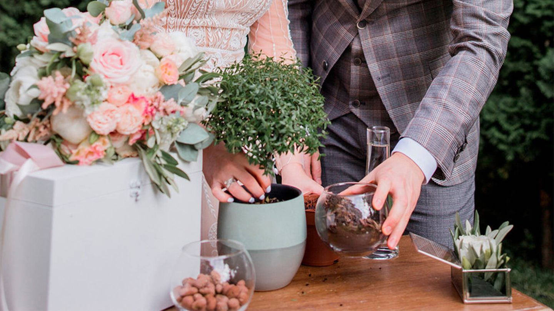 Pareja de novios realizando el ritual de la ceremonia de plantación. (Bodas.net)