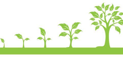 En entorno complejo, ¿la gestión pasiva vale para el perfil de cada inversor?