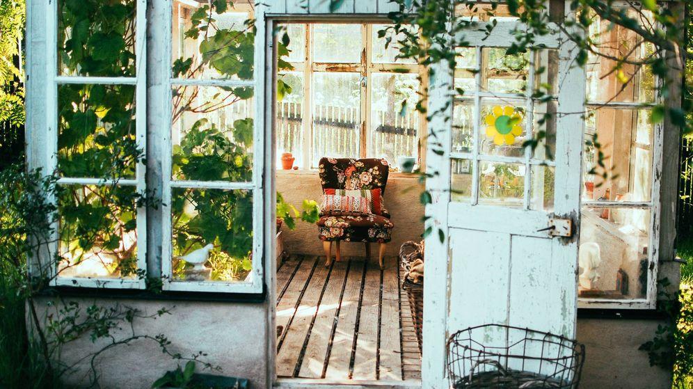 Foto: Dale vida a tu jardín con estos complementos que vende Amazon. (Unsplash)