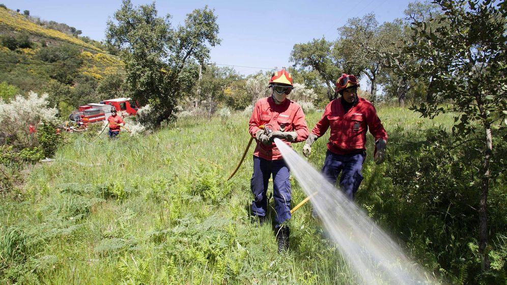 Foto: Foto de archivo de bomberos de Tragsa. (EFE)