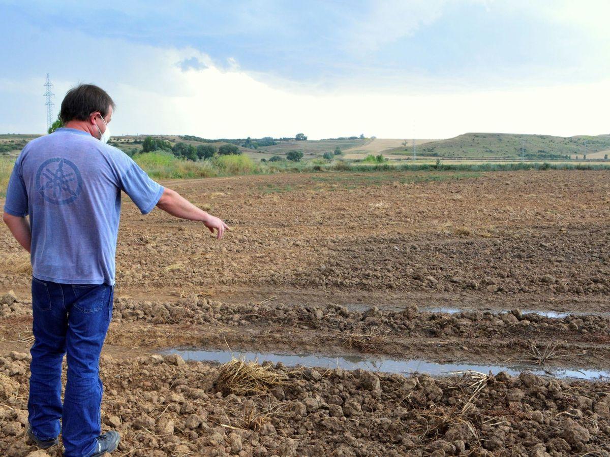 Foto: Un agricultor mostrando la acumulación de purines porcinos provocados por una macrogranja en Palencia. Foto: EFE
