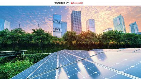 Cómo ha crecido la inversión en fondos sostenibles durante 2020