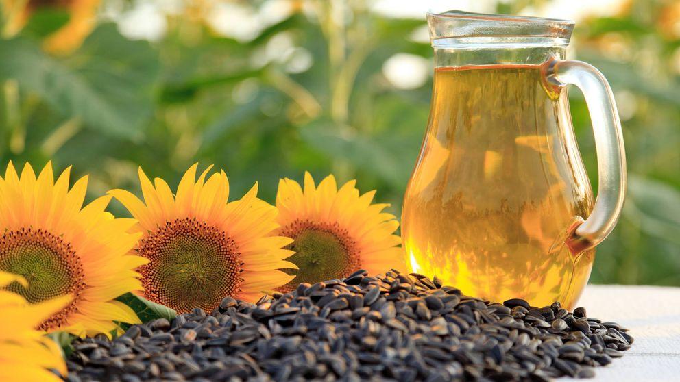 El aceite de girasol es mejor que el de oliva, según científicos alemanes