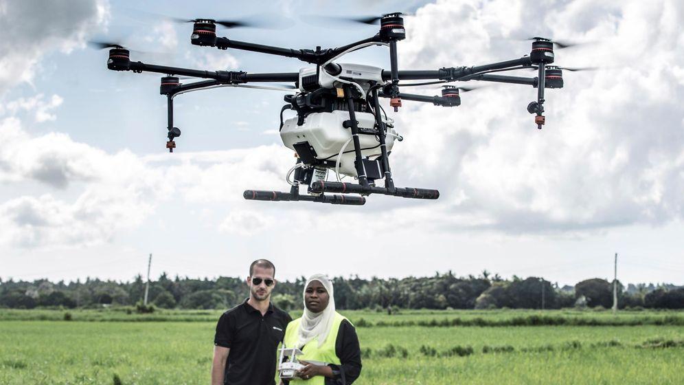 Foto: Zanzíbar, escenario de un novedoso proyecto piloto antimalaria: rociar estos campos utilizando drones de fumigación (EFE)