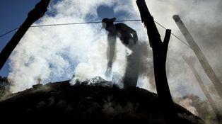 La mentira sostenible: el carbón aún es el rey