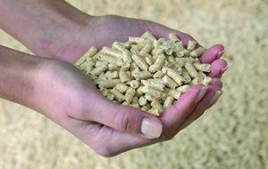 ¿Qué es el 'pellet'? Descubre el boom de la calefacción barata y alternativa