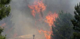 Post de Las autoridades elevan a 61 los fallecidos en el incendio en el centro de Portugal