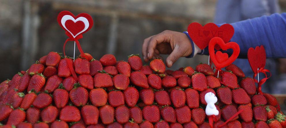 Foto: El pigmento rojo de las fresas podría explicar sus sorprendentes propiedades. (Efe)