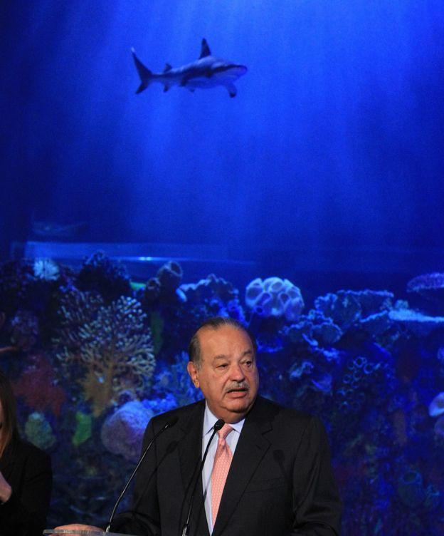 Foto: El magnate mexicano Carlos Slim en el Acuario Inbursa, donde tiburones, tortugas, pirañas y medusas figuran entre los 5.000 ejemplares marinos. (EFE)