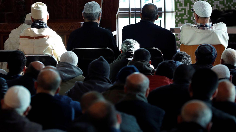 Musulmanes belgas rezan en la Gran Mezquita de Bruselas. (Reuters)