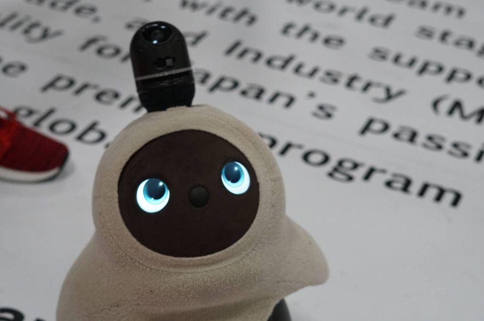 Foto: Esos ojos me están gritando: ¡Llévame contigo!. (M. Mcloughlin)
