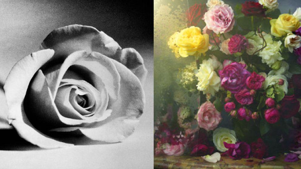 Veinte artistas para la rosa de Lancome