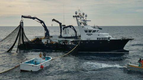España acepta recortes en las capturas de merluza Sur y en la pesca del Mediterráneo