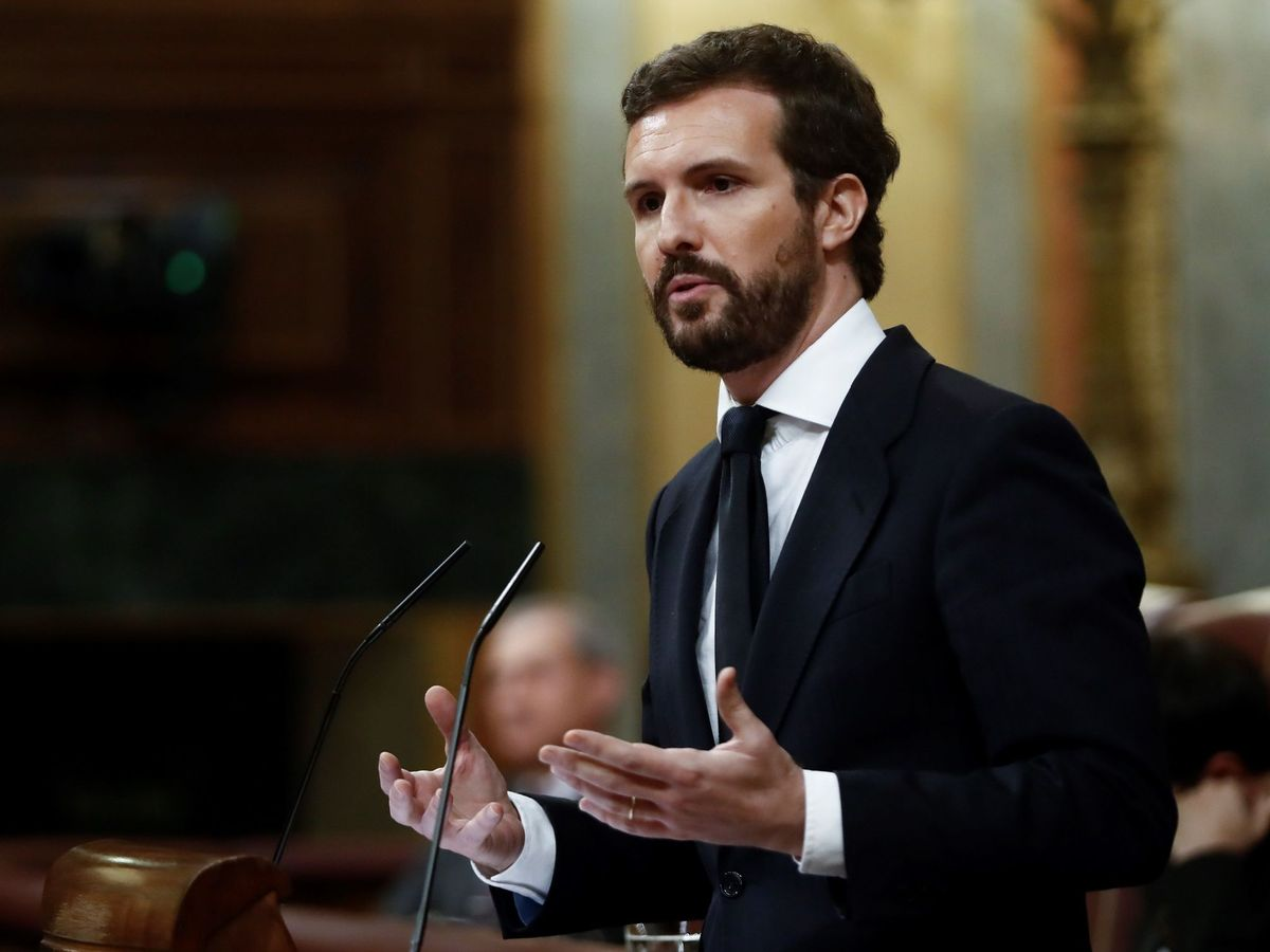Foto: l líder del Partido Popular, Pablo Casado. (EFE)