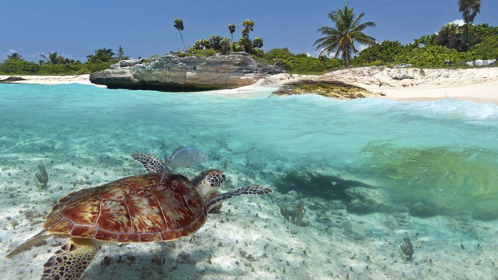 Trágame, Tierra… y suéltame en estas playas