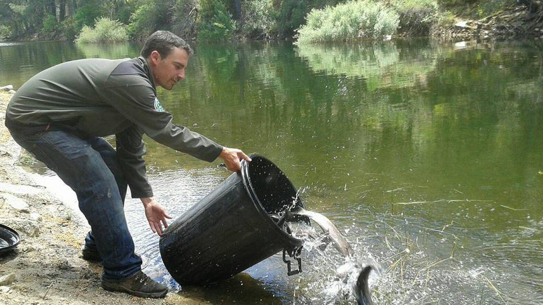 Suelta de truchas en La Jarosa. Foto: Sociedad de Pescadores La Jarosa