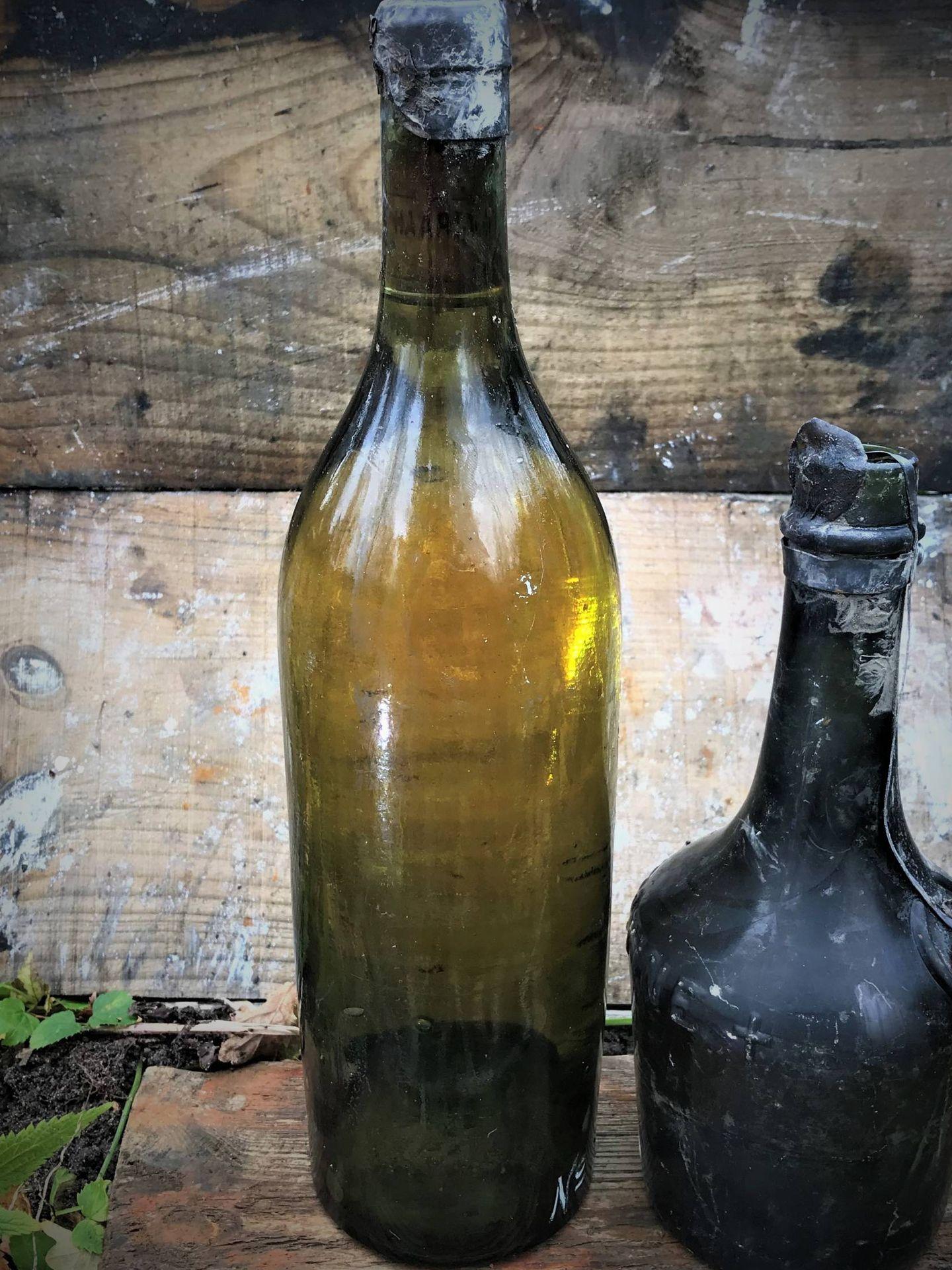 Varias de las botellas rescatadas. (Ocean Xplorer)