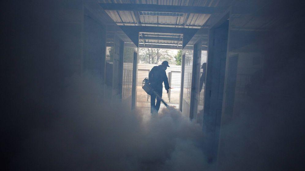 Foto: Trabajos de fumigación. (EFE)