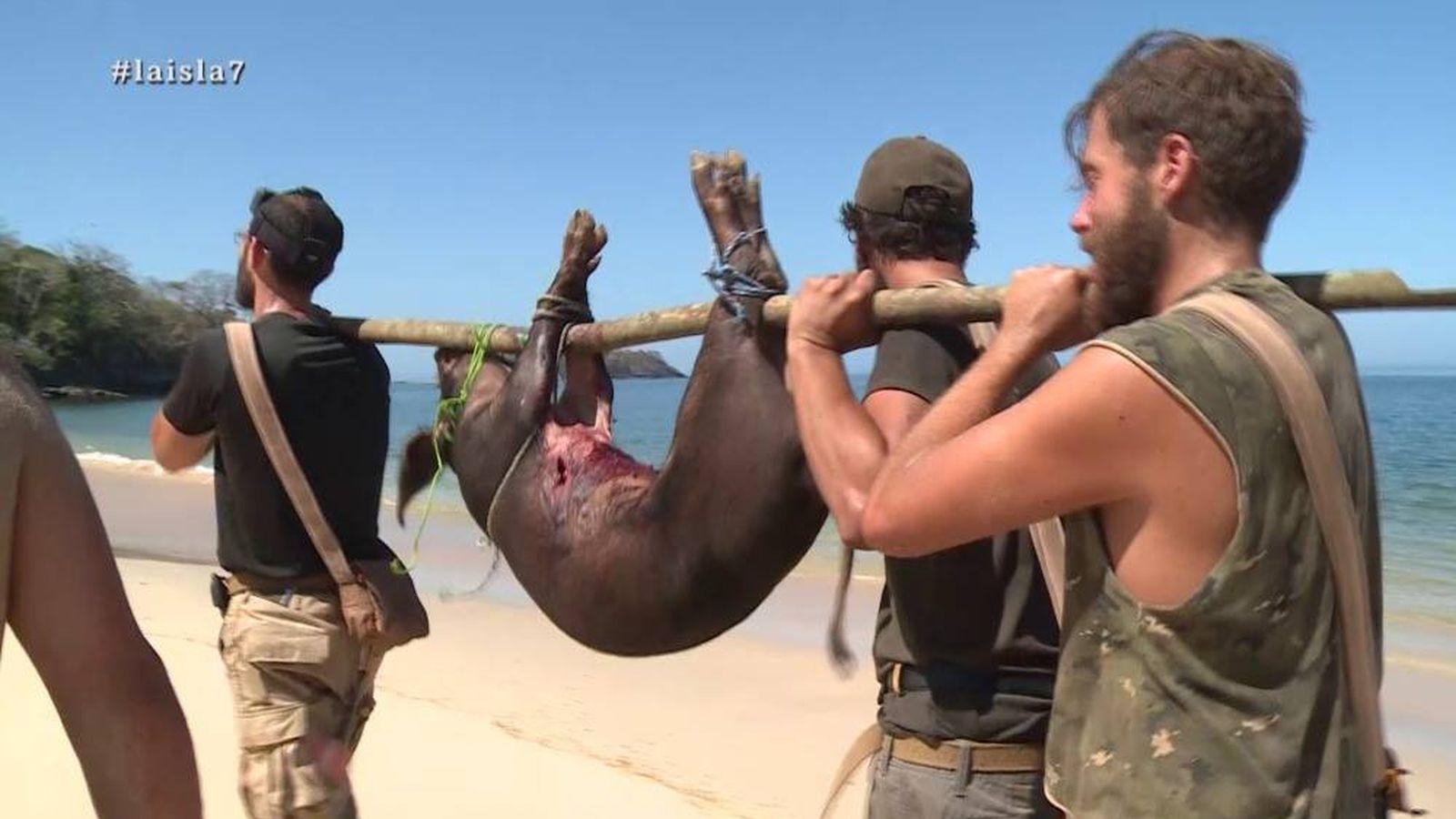 Foto: Santi logra capturar un cerdo en 'La isla'. (Atresmedia Televisión)