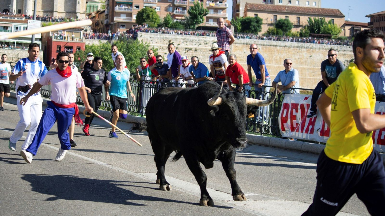 Foto: Tordesillas celebra el Toro de la Vega. (EFE)