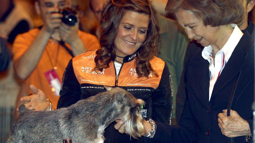 Día Mundial de los Animales: Doña Sofía, la royal a la que más le gustan los 'bichos'