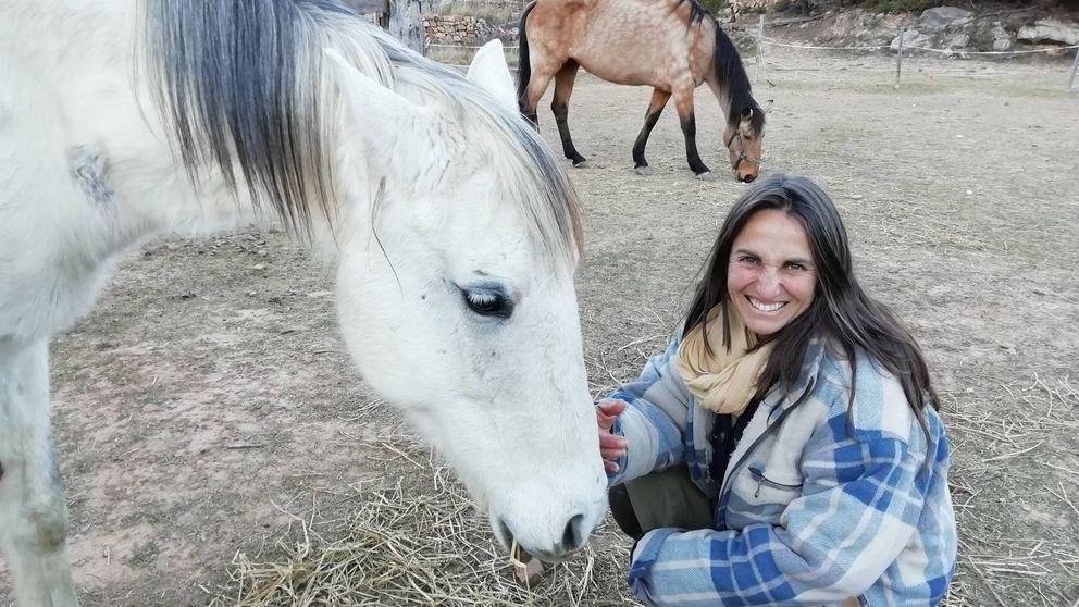 Aquí acaban los caballos que se abandonan en la vía pública