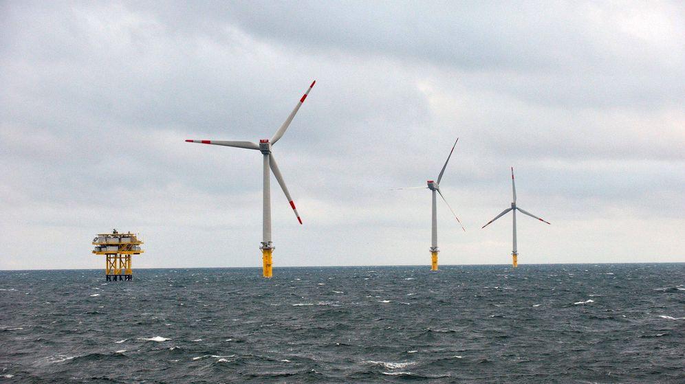 Foto: Parque de energía eólica marina (Efe)