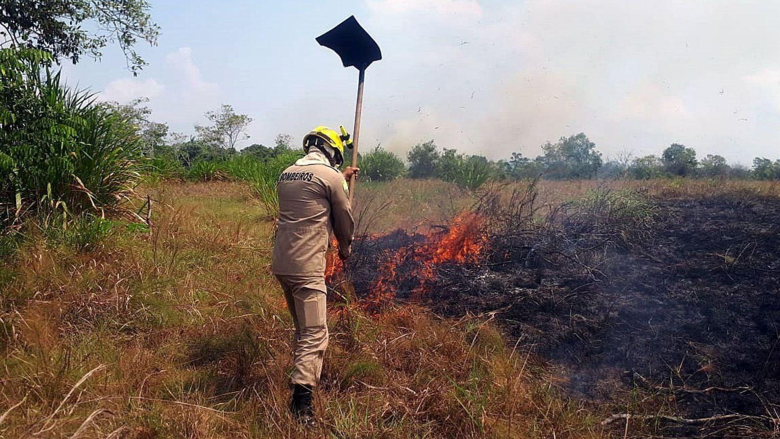 Foto: Bomberos del Estado de Acre trabajando en la extinción del incendio en la selva amazónica. (EFE)