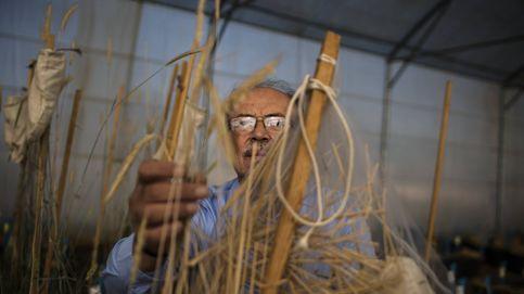 La solución al hambre en Oriente Medio está en manos de este científico sirio