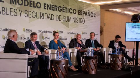 Hacia un nuevo modelo energético: Hay que aspirar a un futuro 100% renovable