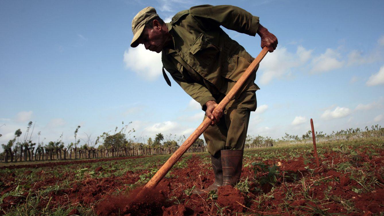 """Un viaje al negro futuro del """"socialismo próspero y sostenible"""" de Cuba"""