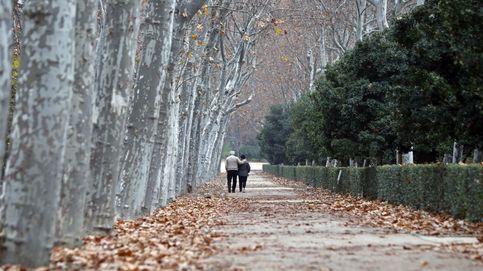 Madrid cierra el Retiro y otros seis parques por culpa de los fuertes vientos