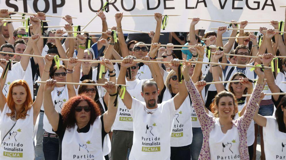 Foto: Manifestación contra el Toro de la Vega convocada por el Partido Animalista Contra el Maltrato Animal (PACMA). (EFE)