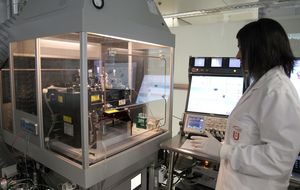 El TS anula el real decreto que regula el banco de células madre