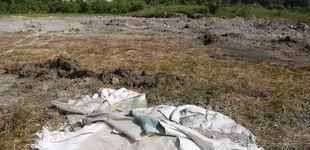 Post de Encuentran una fosa con 119 bolsas con restos humanos en México