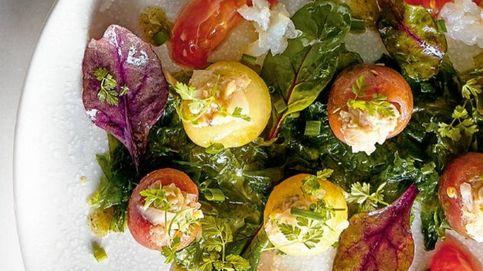 Hasta en la sopa: ocho recetas diferentes para saborear el tomate