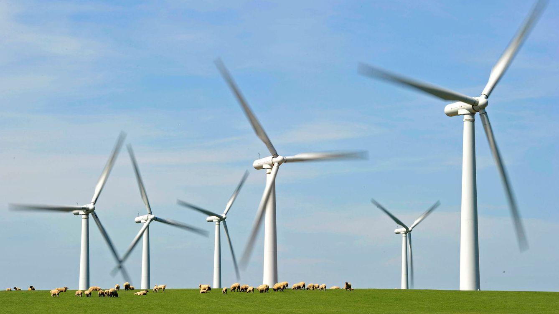 El Gobierno explora vías para favorecer la industria nacional en las subastas renovables