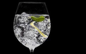 Los diez errores que cometemos con el 'gin-tonic'
