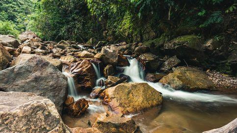 El Amazonas ya libera más carbono del que absorbe: así se agrava el efecto invernadero