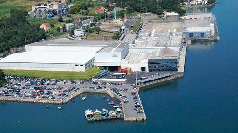 La Fiscalía denuncia a la conservera Rianxeira por presuntos vertidos contaminantes al mar