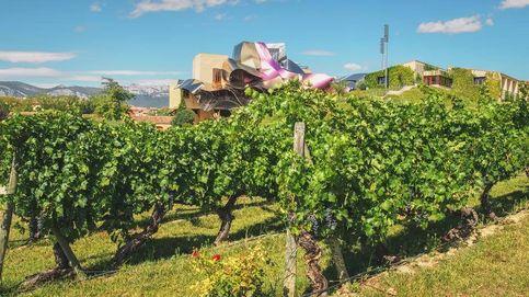 El Santo Grial de los viñedos de Rueda: el retorno a la tierra o el cultivo 100% ecológico